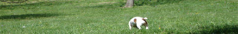 GeekMBA360 header image 2